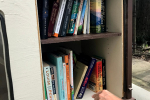 Little Free Library-4
